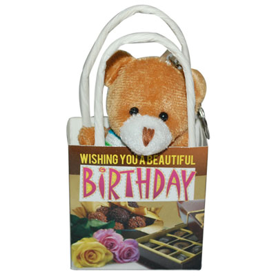 Click here for more on Wishing a Beautiful Birthday Teddy With Bag -1267