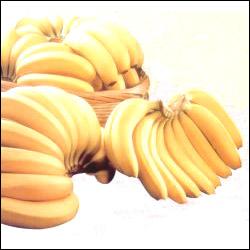 Click here for more on Banana Bonanza